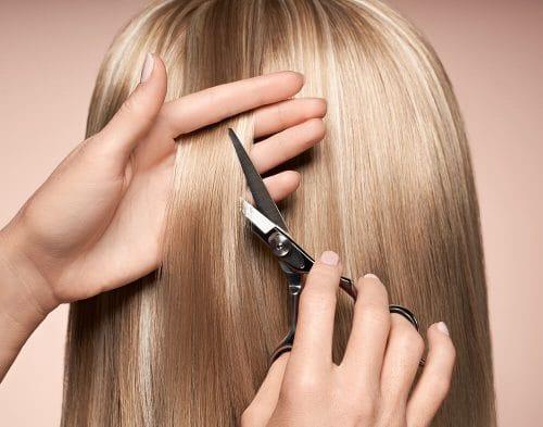gwenn haren knippen